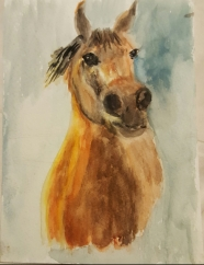 """""""Amoura"""" watercolor by beverly"""